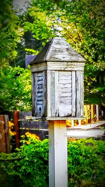 Birdhaven Birdhouse In Touch With Nature Coexist Nature Photography Tinyhouse In My Garden Beauty All Around Us Magic In The Garden Fairy House