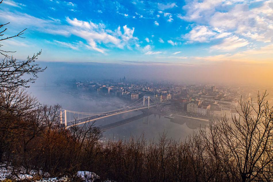 Meltdown Bridge Built Structure City Cityscape Danube Fog Foggy Morning Sky Sunrise Winter