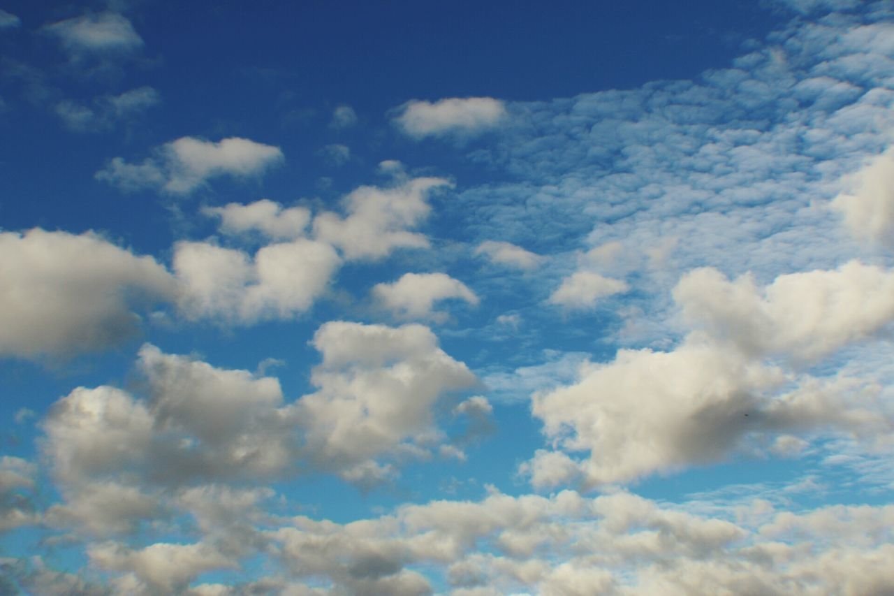 Cloud - Sky Cloudscape Sky Backgrounds Blue Weather Heaven Nature Sunlight Dramatic Sky Softness Fluffy Scenics Cumulus Cloud Environment Tranquility Awe Aerial View Outdoors No People