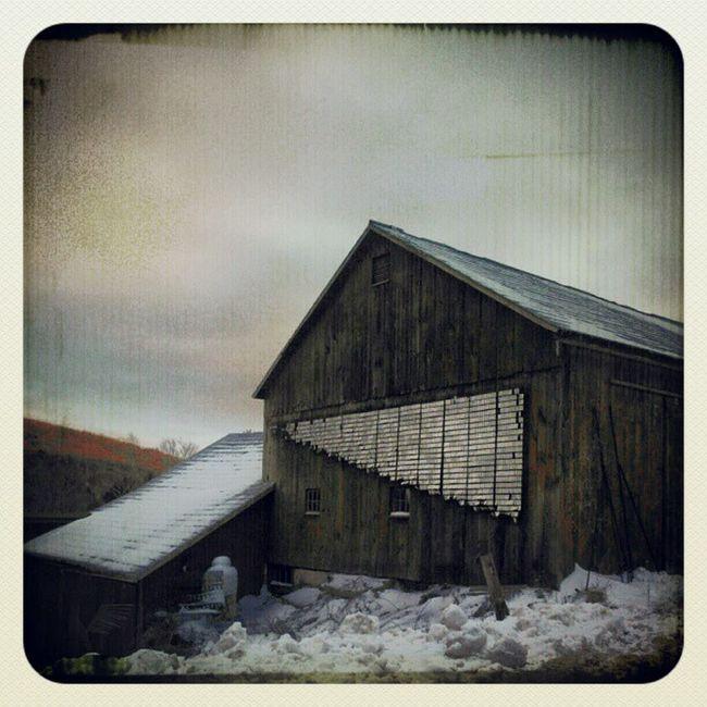 365photosoneadayforayear Earlybirdfliter Instachill Barn Instagram Instamood Instafind Instagramhub Snow