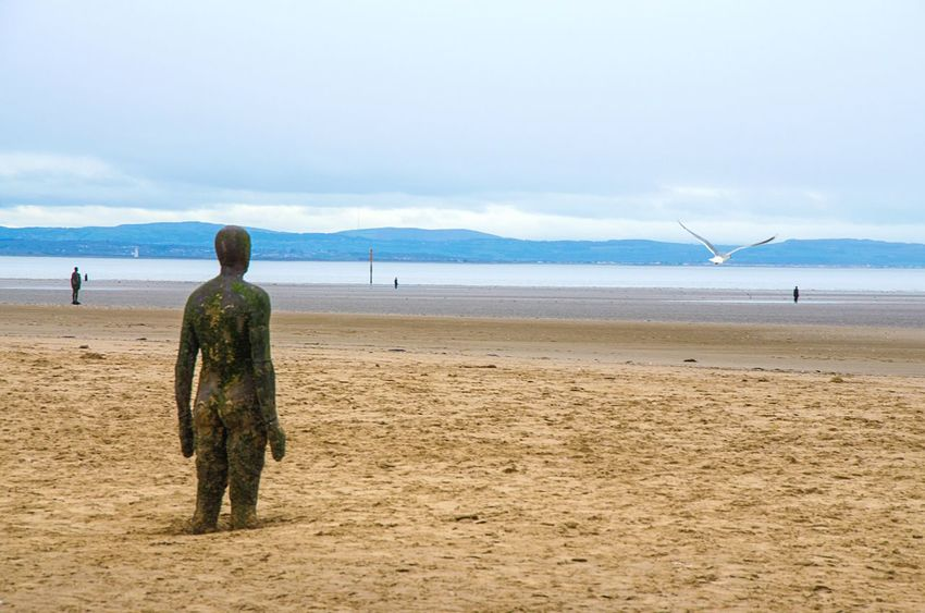 Another Place By Anthony Gormley Crosby Beach The Great Outdoors - 2017 EyeEm Awards