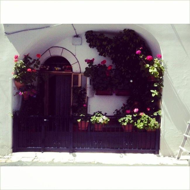 Прекраснейший выход из дома Italia Cisternino Casa