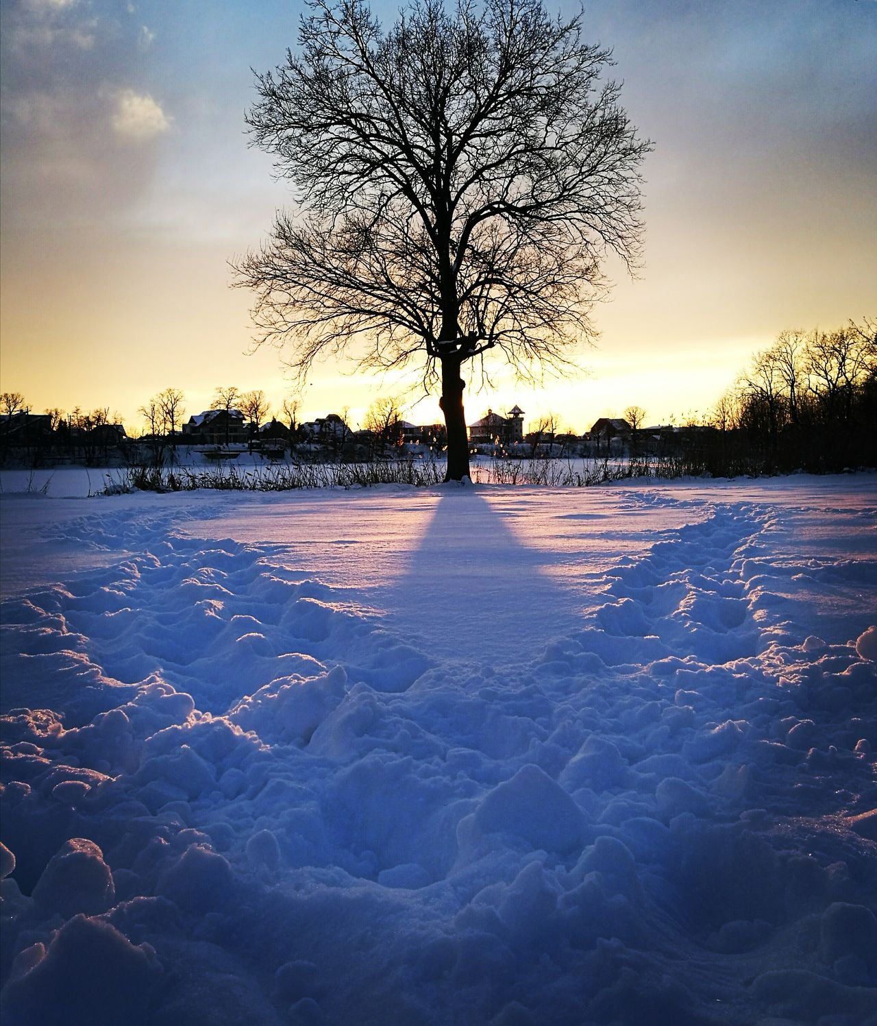 Sunset Tree Reflection Sky Water Outdoors Nature No People Beauty In Nature Cold Temperature Day Paths