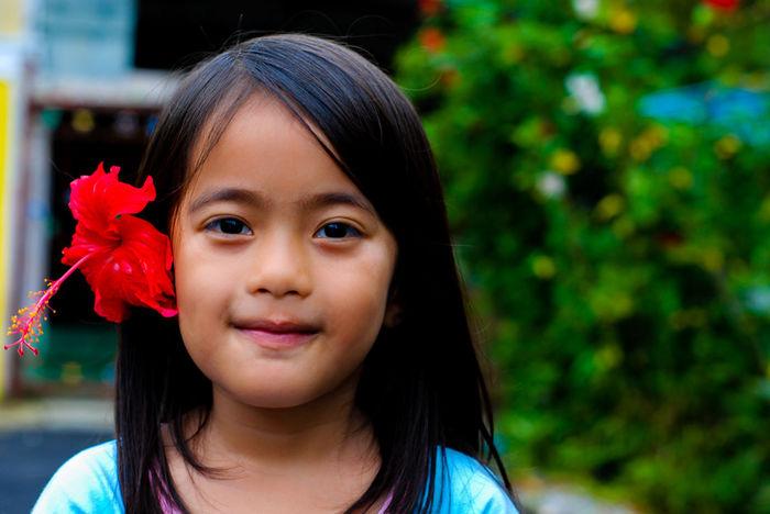 Aloha! Hibiscus Flower Hibiscus Hibiscus Journey Potrait