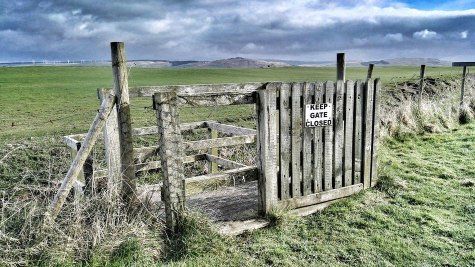 Gate Wooden
