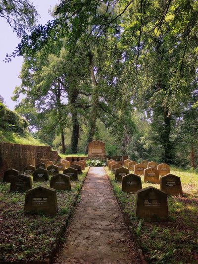 Showcase: September Visual Witness Shootermag Around The World EyeEm Traveling Visit Romania ShotoniPhone6s Hipstamatic EyeEm In Sighisoara Cemetery