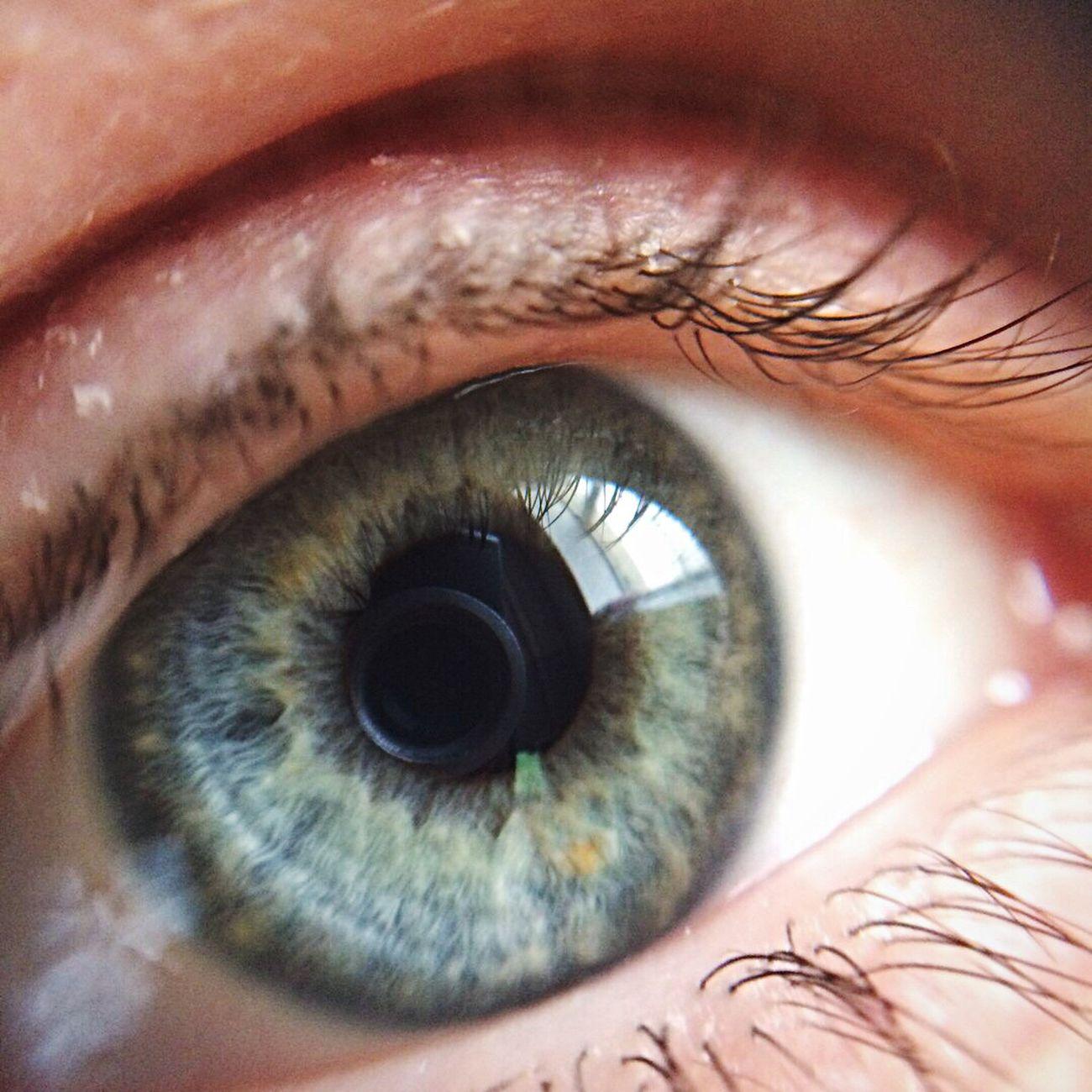 Eye Myeyes Human Eye Eyelash Close-up Real People Human Body Part One Person Eyeball Sensory Perception Eyesight Vision Day People First Eyeem Photo
