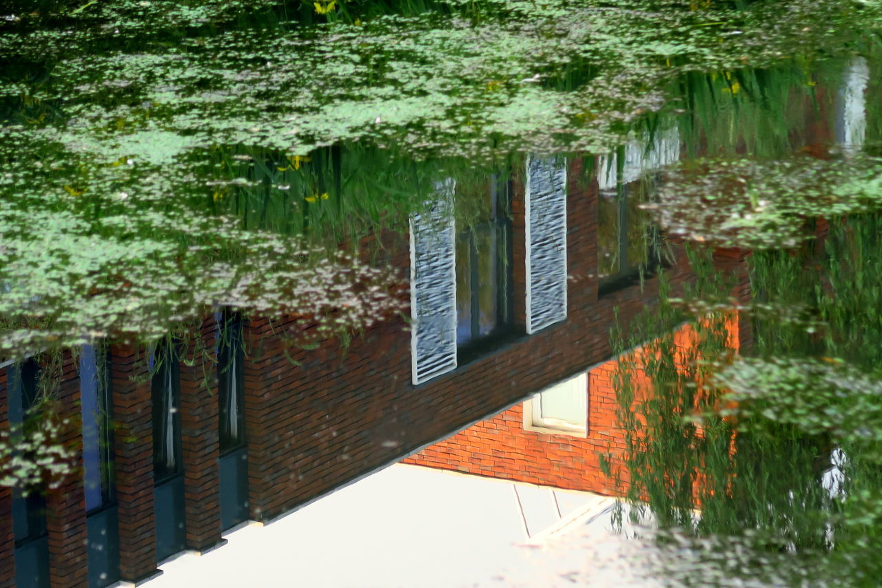 Sunset water reflection: just before the ducks came in, from the left Architecture Architecture_collection Building Built Structure Canals Canals And Waterways Day Ditch Dutch Canals Dutch Ditch Glass Wall And Its Reflections Growth Nature No People Outdoors Reflection Reflection In The Window Reflection_collection Reflections Reflections In The Water Tree Water Water Reflections