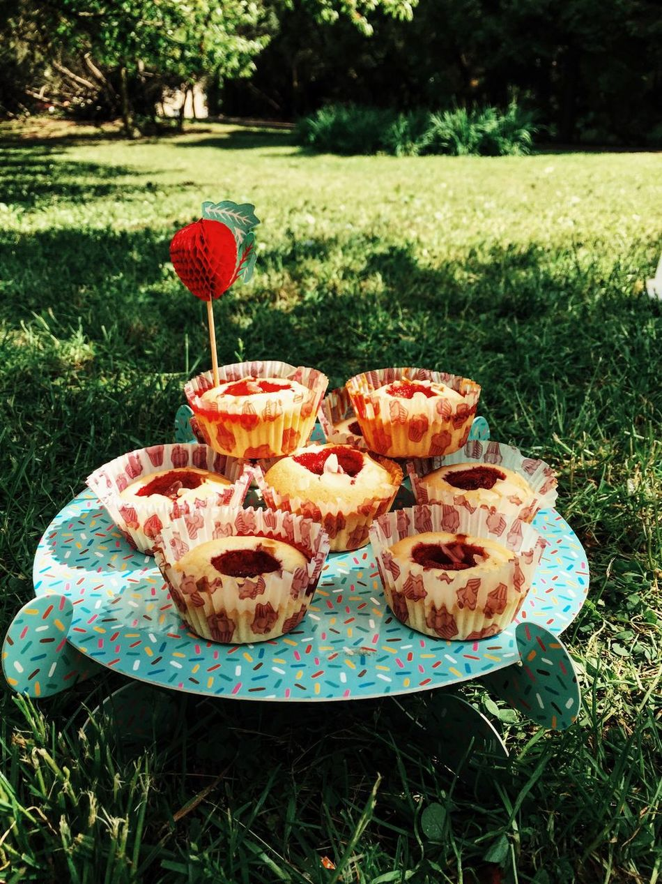 Picnic time Enjoying Life Sweet Yummy Summer Food Porn Picnic Vacation Eating Food Muffins Park Party