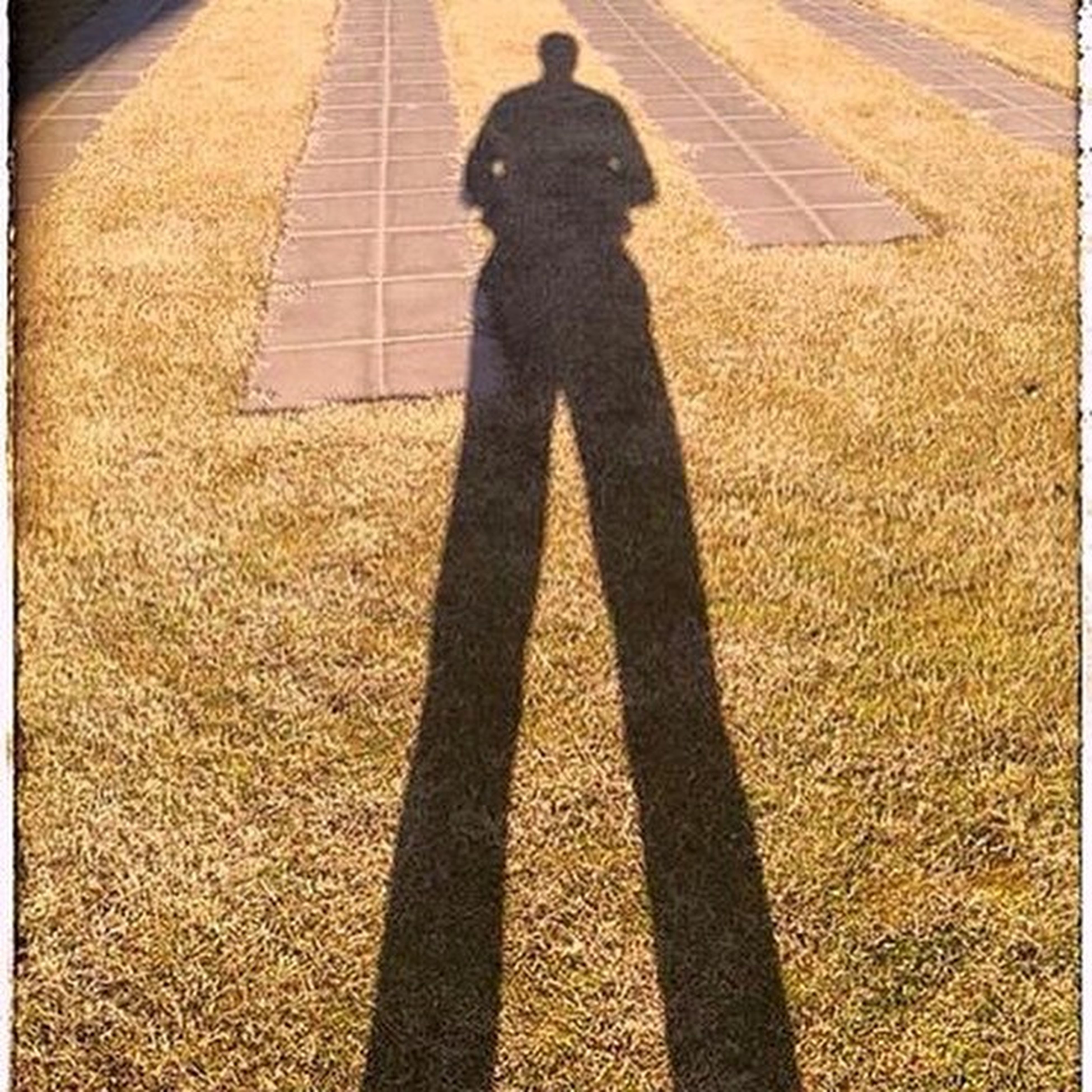 shadow, focus on shadow, sunlight, high angle view, lifestyles, street, leisure activity, unrecognizable person, standing, walking, men, road, day, outdoors, low section, auto post production filter, sunny, road marking