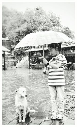 The Dog & the Girl Childhood Full Length Season  One Animal Holding Casual Clothing Togetherness Domestic Animals Day Rainy