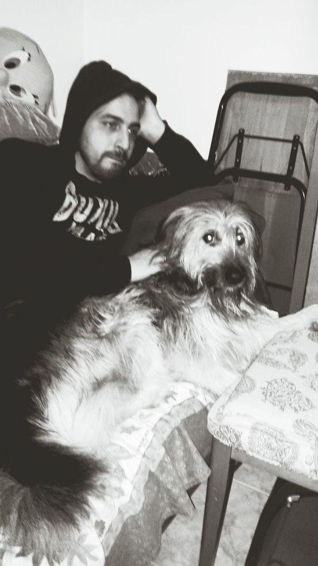 ❤ Dog Love Boyfriend Friends