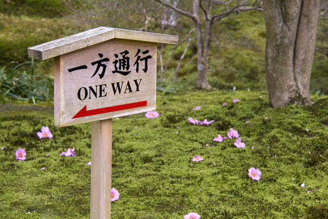 One way warning sign in park, in Japan As Communication Day Detail Direction Directional Sign Grass Guidance Information Information Sign Japan Nature Non-urban Scene Outdoors Park Path Pole Sign Signboard Symbol Text Tranquil Scene Warning Warning Sign Wooden Post