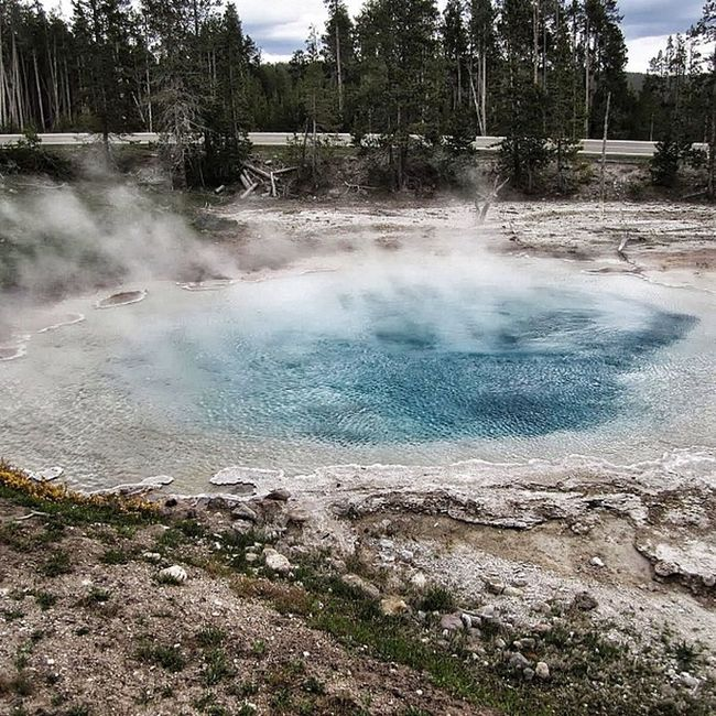 Lower Geyser Basin Yellowstone National Park #yellowstone #yellowstonenationalpark #nationalpark #nature #outdoors #geyser #wyoming #usa #travel #honktravel Nature Travel USA Outdoors Yellowstone Wyoming Geyser Nationalpark Honktravel Yellowstonenationalpark