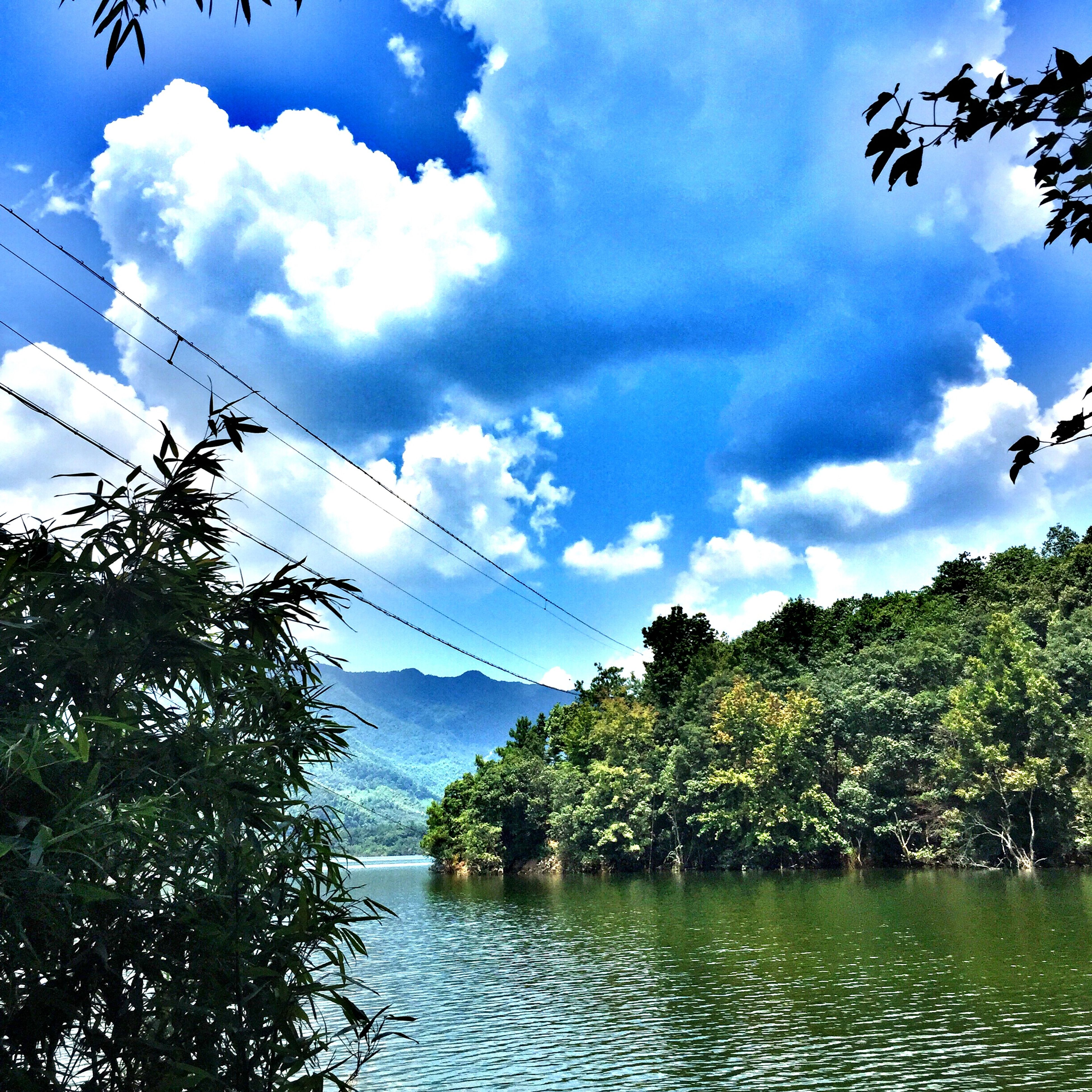 tree, sky, water, cloud - sky, tranquil scene, tranquility, scenics, beauty in nature, cloud, waterfront, lake, nature, cloudy, river, blue, reflection, idyllic, day, growth, non-urban scene