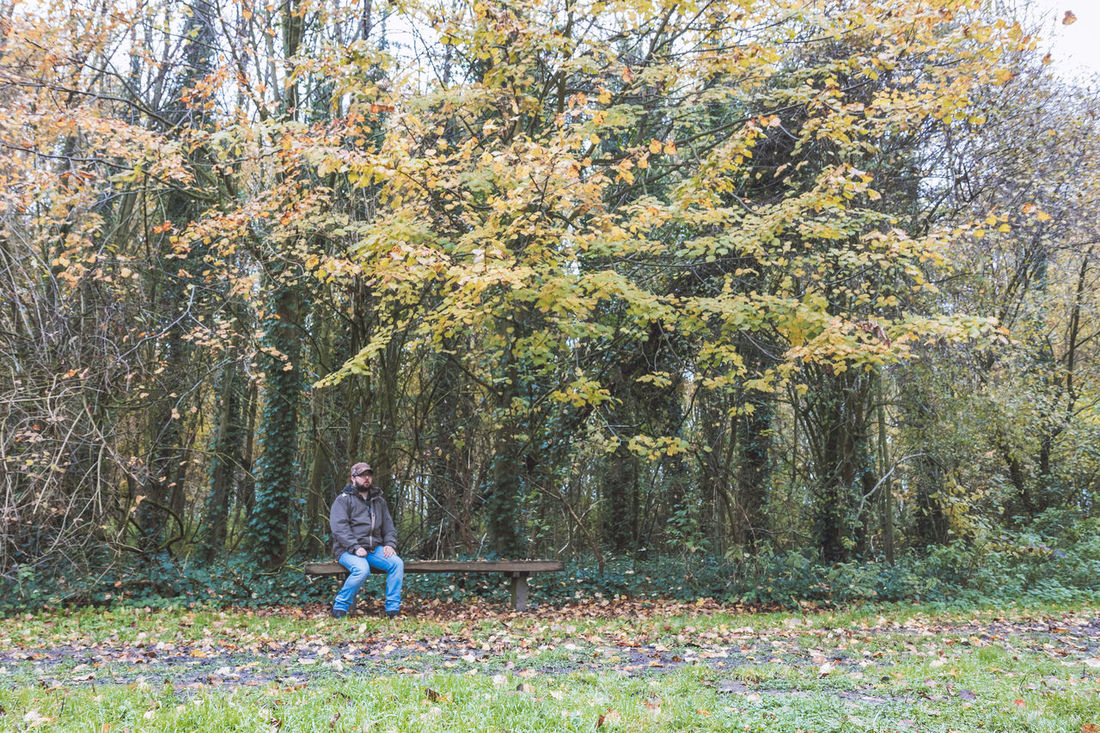 Young adult male relaxing on a bench in the forest Autumn Man WoodLand Adult Adults Only Beauty In Nature Branch Casual Clothing Day Forest Full Length Grass Growth Leisure Activity Liedekerkebos Lifestyles Nature One Person Outdoors People Real People Scenics Tree Tree Trunk Young Adult