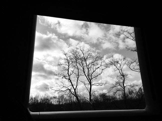 Blackandwhite Landscape Traveling Trees Silhouette Window Train