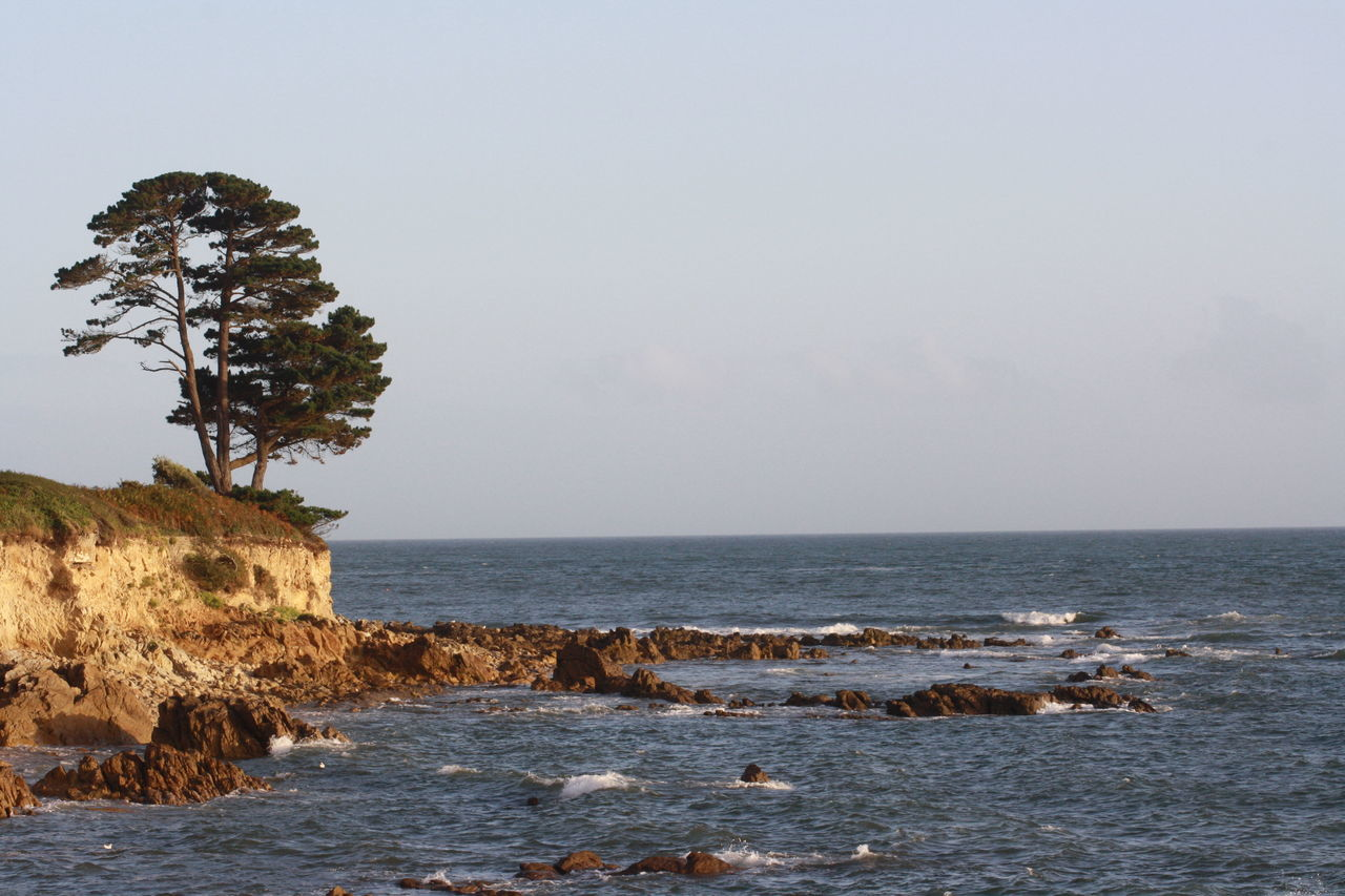 Beautiful Nature Beauty In Nature Landscape Landscape_Collection Landscape_photography Low Angle View Natural Beauty Nature Nature Photography Nature_collection Naturephotography Rock - Object Rock Formation Sea Sea_collection Seascape Tide Tranquil Scene Tree Wave Wave Pattern Waves Waves And Rocks Waves Crashing Waves, Ocean, Nature
