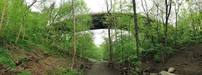 Urban Nature Hiking