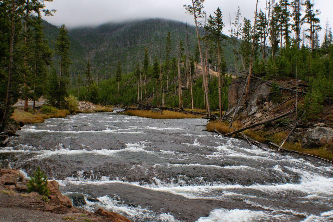 Yellowstone River Yellowstone National Park River Rushing Water Rushingwater
