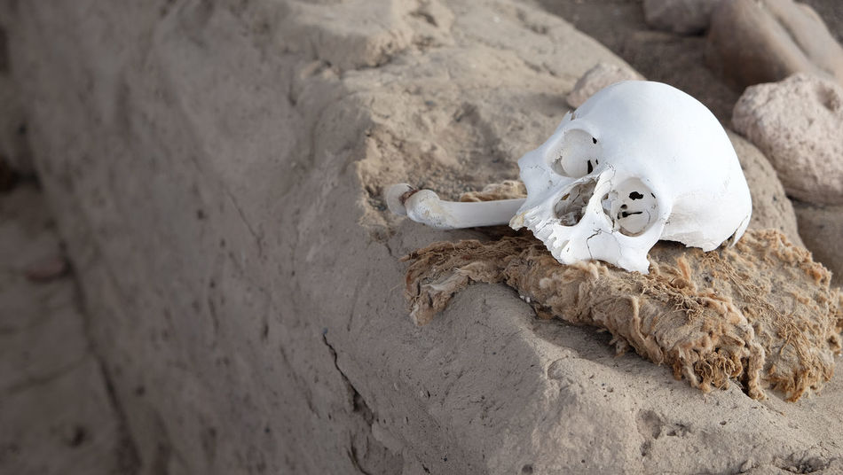 Beautiful stock photos of totenkopf, Day, Dead, Death, High Angle View