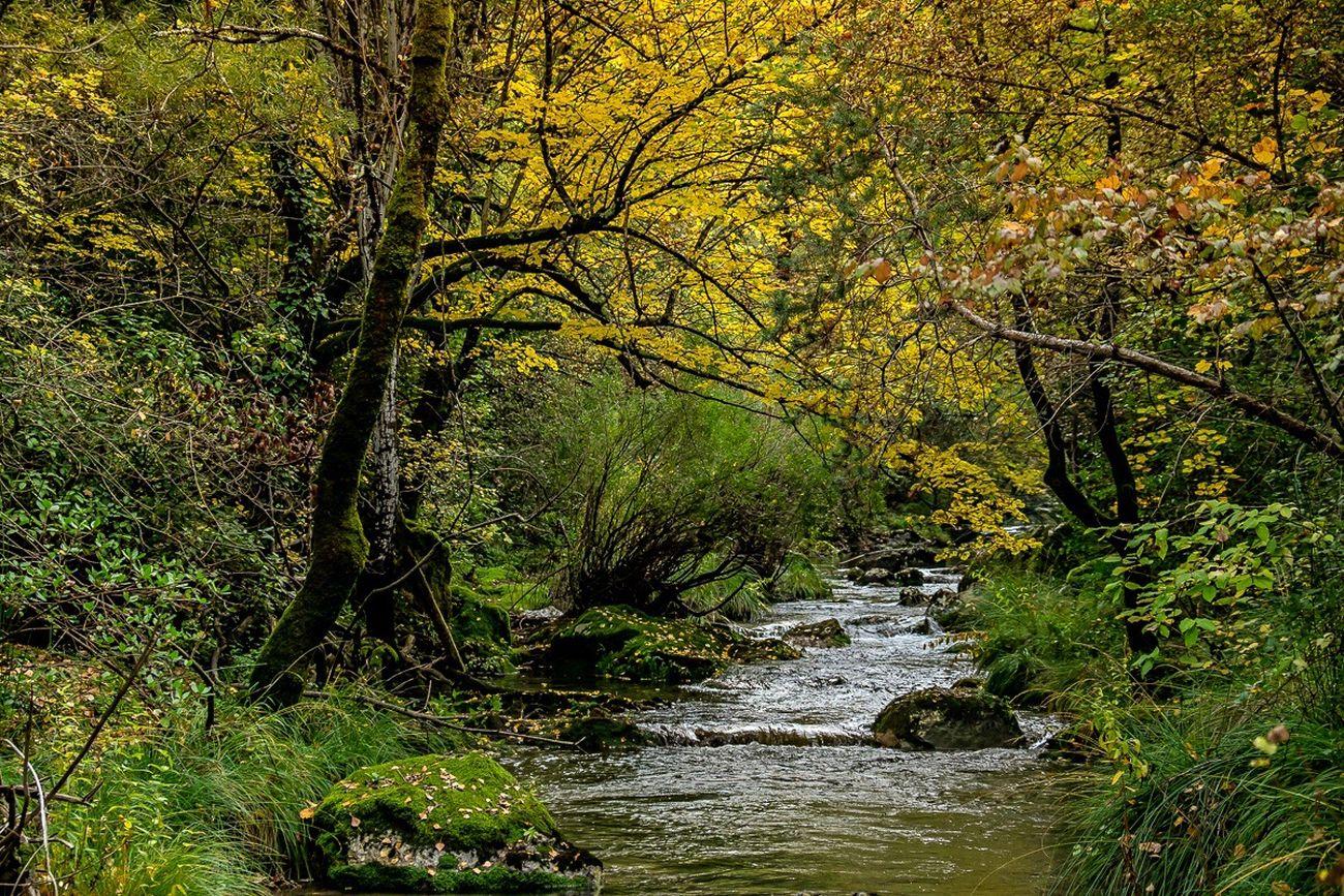 Une si jolie rivière
