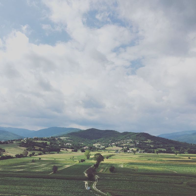 Paysage de Toscane / Toscana landscape Landscape_Collection Landscape Toscane Tuscany Green Landscape_photography Summertime Sky Nature_collection Travel Summer
