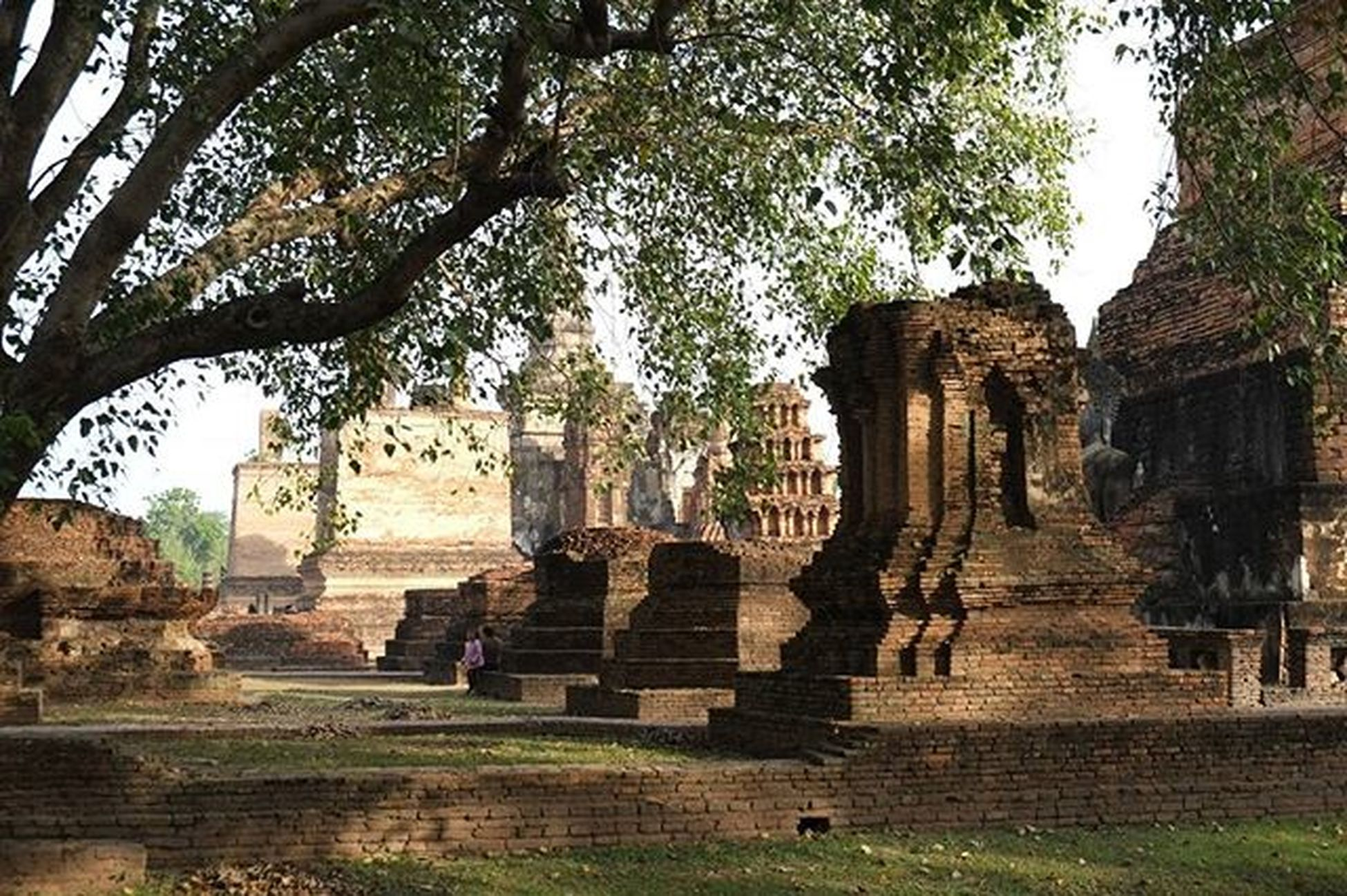Hanging Out Hello World Travel Temple Temple - Building Temple Architecture Temple Thailand Thailand Thailandstyle Thailand Culture Thailand Temple Ayutthaya | Thailand Ayutthaya Historic Park Beautiful Ayutthaya Ayuttayaprovince Templephotography Temple In Thailand Temple Building