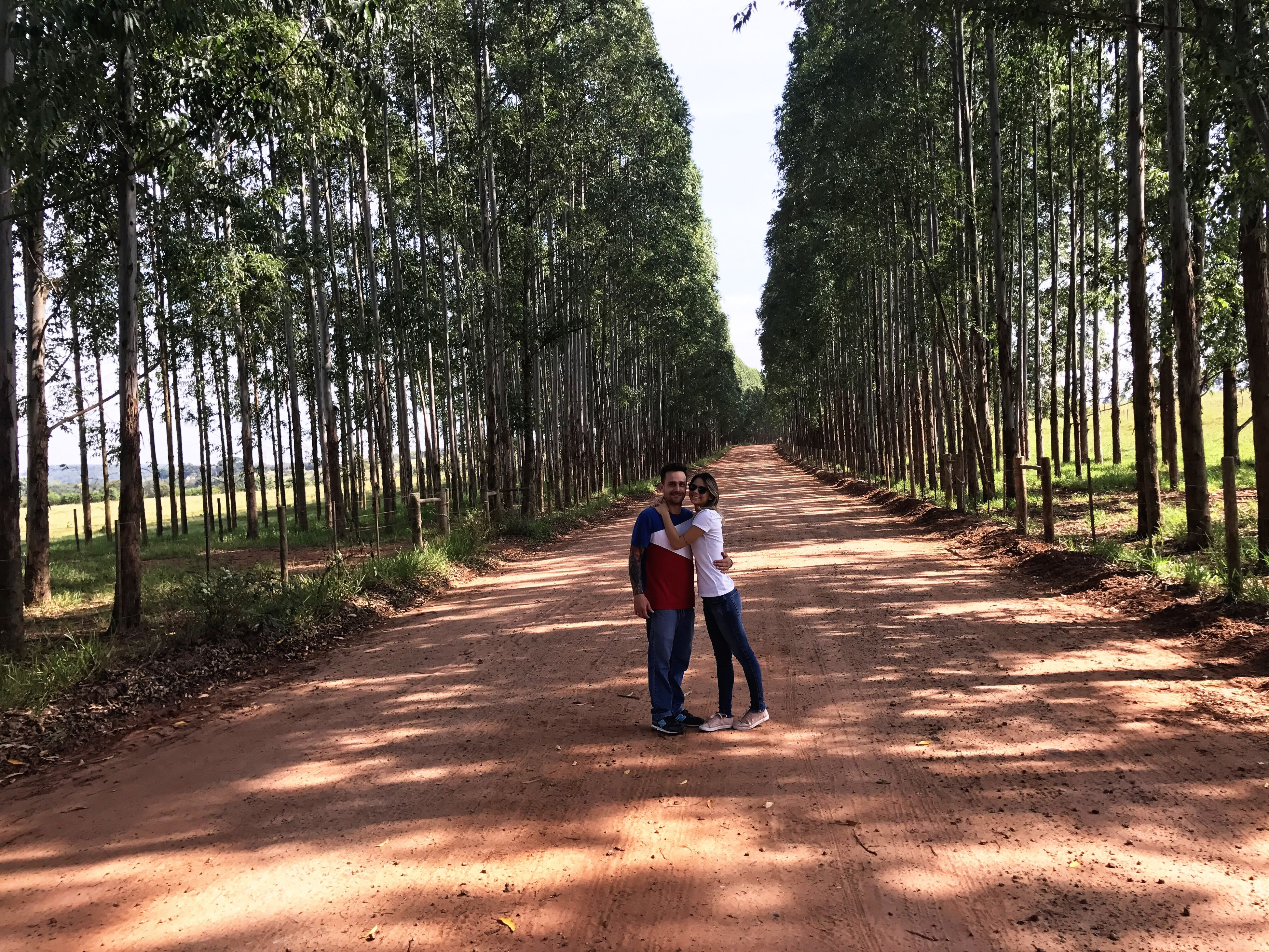 tree, two people, real people, full length, togetherness, casual clothing, walking, day, leisure activity, nature, growth, outdoors, lifestyles, the way forward, boys, bonding, women, men, forest, beauty in nature, young adult, adult, people