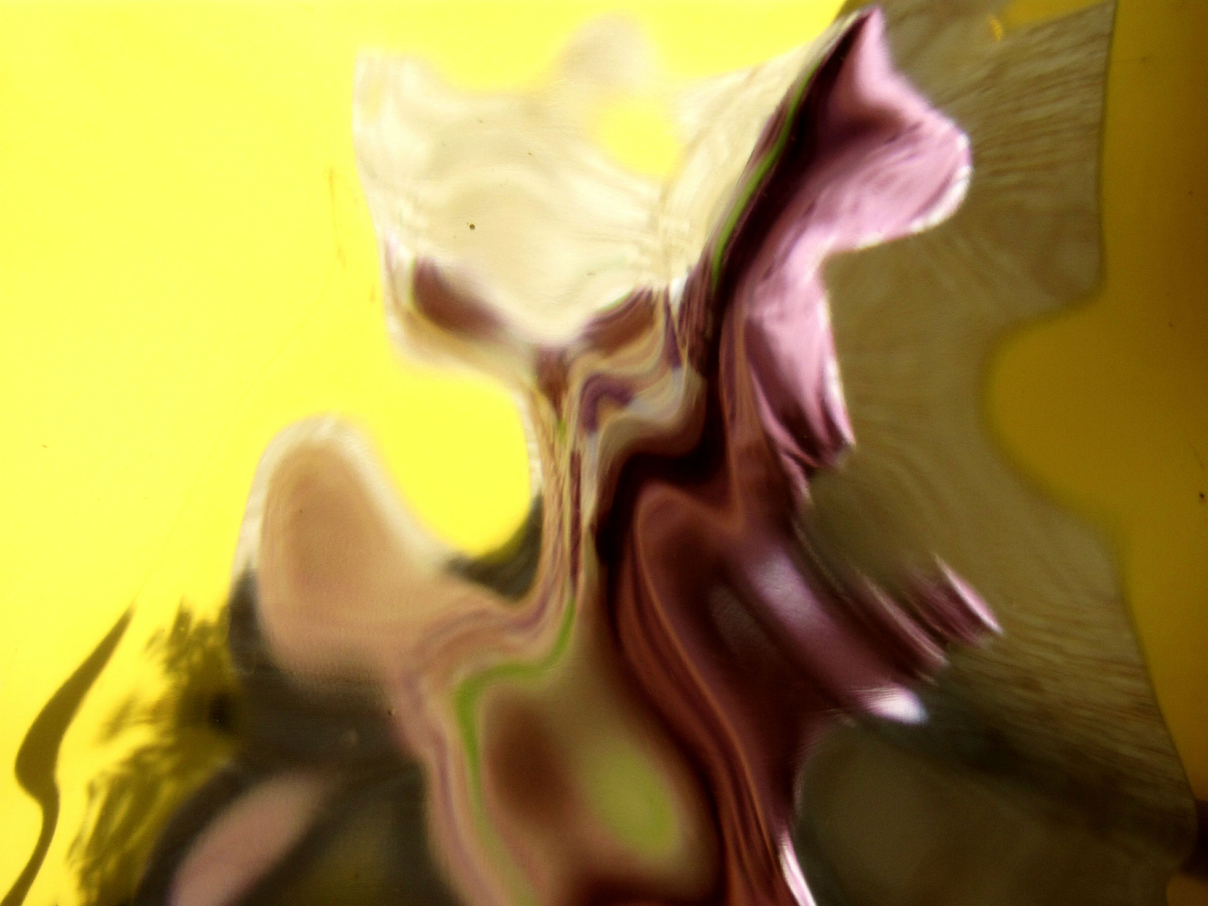 abstract, studio shot, yellow, no people, close-up, indoors, day