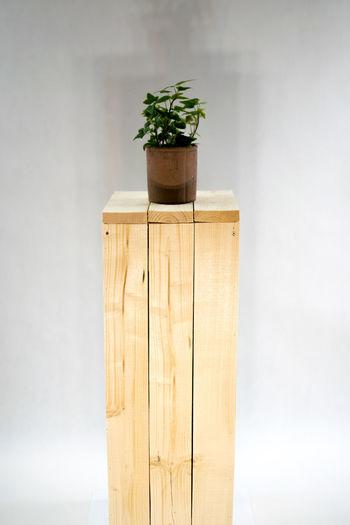 Stojak Wooddesign Recznierobione Handmade Woodenbox Marzeniadrewnem Myslenice Krakow Homedecor Homemade Woodworker Woodwork  Drewno No People White Background Plant Indoors  Growth