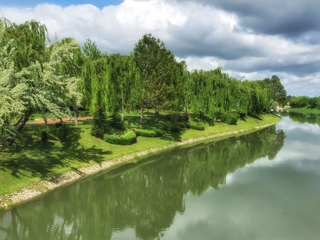 IPhoneography HDR Nature Park Relaxing Green Trees River