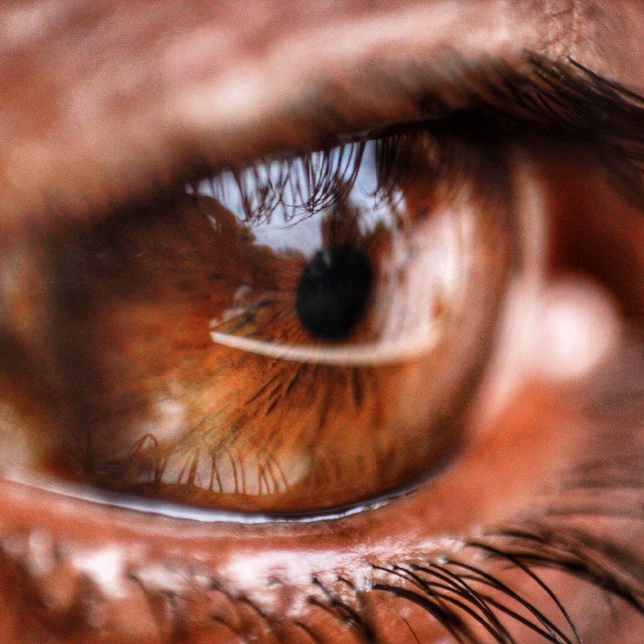 Eye😍 Human Eye Sensory Perception Eyesight Eyelash 600D Iris - Eye Eyeball Extreme Close-up Close-up Real People Unrecognizable Person Macro Brown Eyes Reflection One Person Hazel Eyes  People Outdoors Vision Day