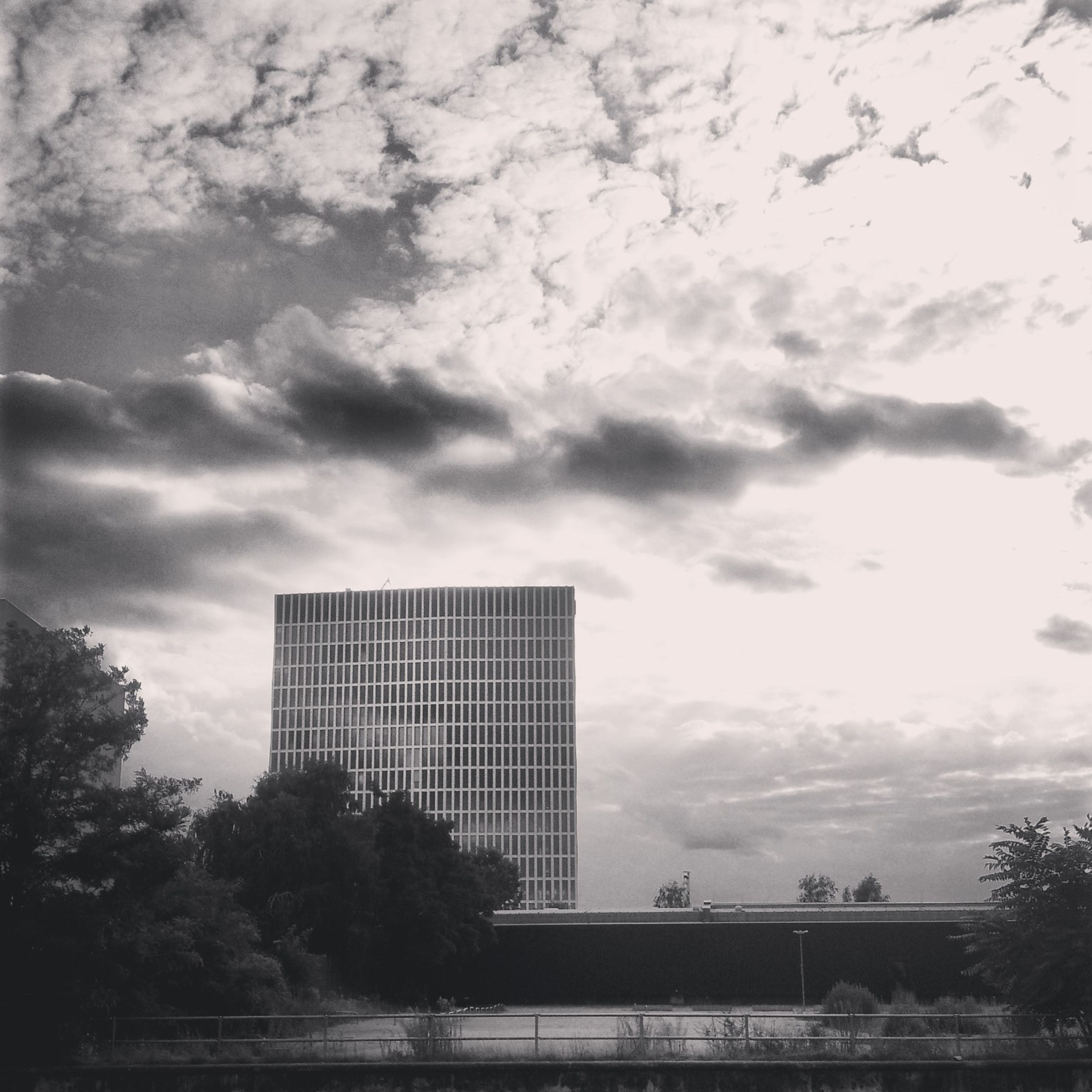 sky, built structure, architecture, cloud - sky, building exterior, cloudy, tree, low angle view, city, overcast, cloud, weather, building, day, modern, outdoors, office building, no people, tall - high, skyscraper