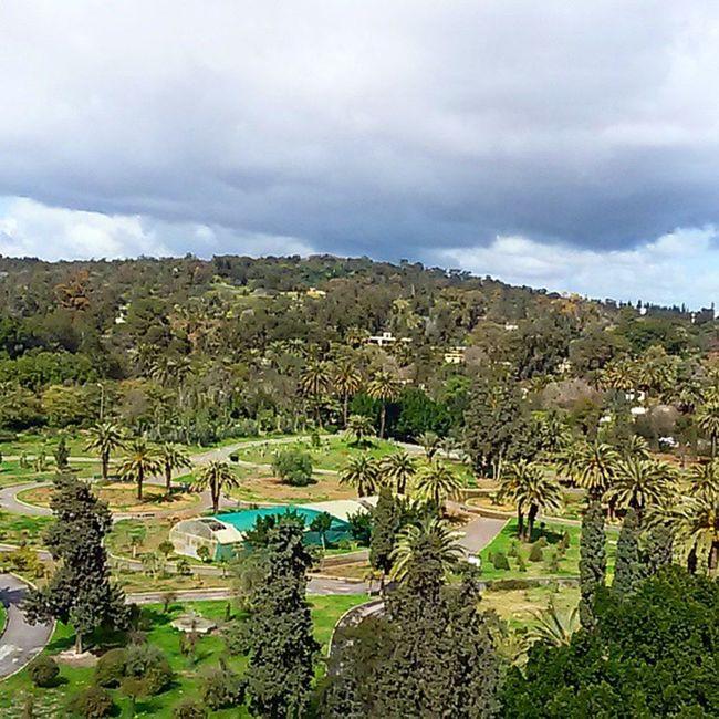 Park Tunisia Igertunisia الربيع و