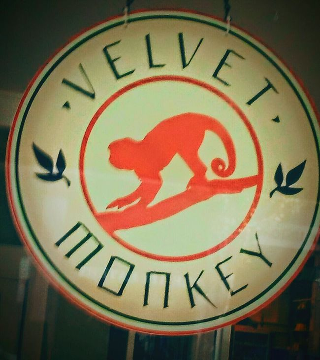 Hanging Out Taking Photos Check This Out Monkeys Are Always Funny😂 Monkey Business Monkeyingaround Downtown Enjoying Life Awardwinningstreet The Mix Up Happyness Cheese! 3rd Street Favorite Local Stores SignSignEverywhereASign Signs EyeEm Simple & Clean EyeEm Gallery EyeEm Eternity And A Day Eyemphotography I Took This Picture Eye4photography  Eyeemphotography