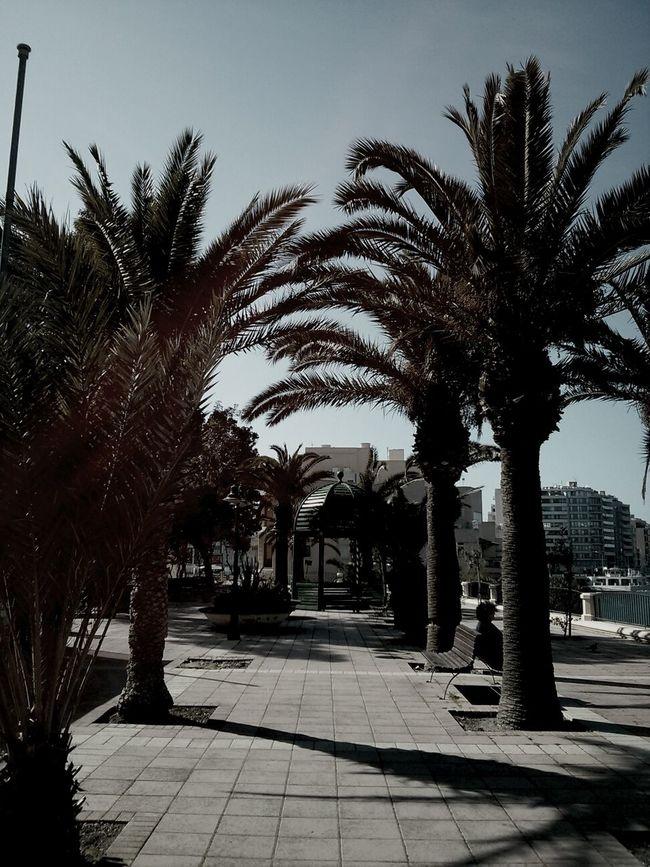 Sunshine, Strolling, Happy People, Fun, Living