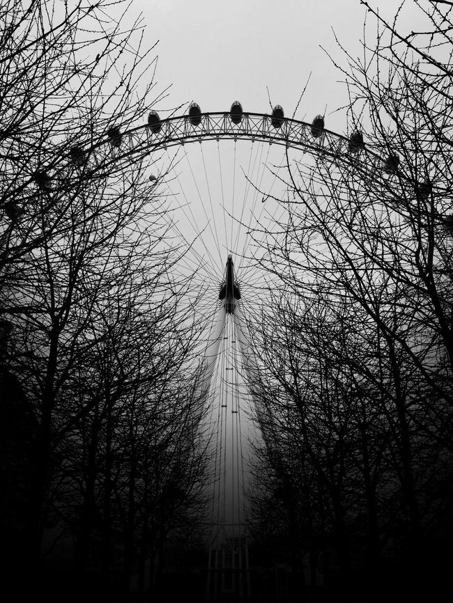 The London Eye Iphone 6 London Eye Black App Trees Branches Blackapp