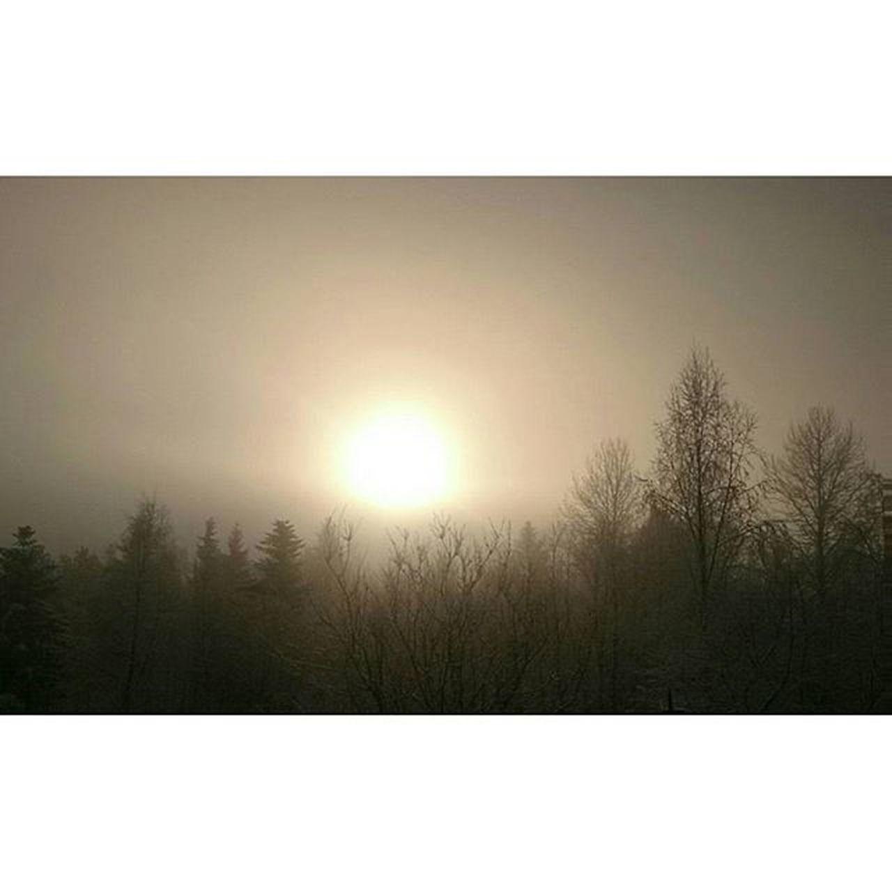 Rendalen Take Dis Natur Nature Fog Clouds Sun Breakthrough Sol Sunrise Nofilter Gråvær Ilovenorway Visithedmark Visitnorway Norgeibilder Iwokeuplikethis Utno Likeettervardetknallvær Idyll Grått Grey Latergram