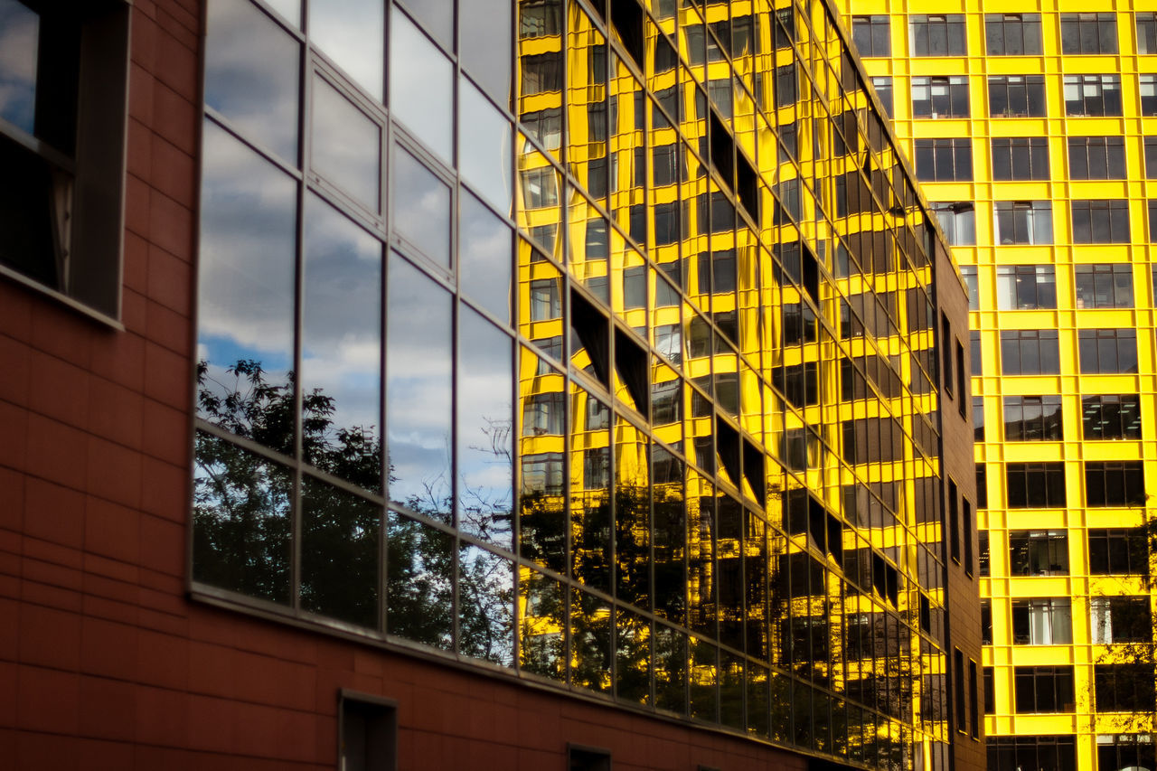 Architecture Window Building Exterior Built Structure Modern Office Building Exterior Reflection No People Skyscraper Outdoors Day City Yellow Sky Tree The Architect - 2017 EyeEm Awards