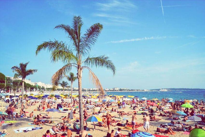 Summer Beach Cannes