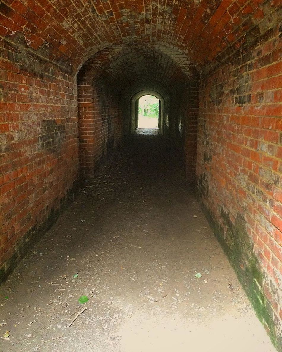 Inside the Tunnel Ancient Monument Arch Architecture Brick Brick Wall Building Built Structure Day Defensive Fighting Position Defensive Structure Defensive Wall Diminishing Perspective Dirty Empty Fortifications Hilsea Lines Hilsea Lines Ramparts Narrow No People Old Orange Color Ramparts Tunnel Wall Wall - Building Feature