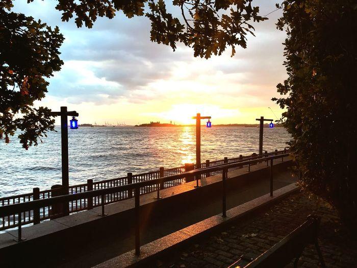 Fall Sunset Hudson River Battery Park City NYC Photography Tree first eyeem p EyeEmNewHerе Tree NYC Photography Battery Park City