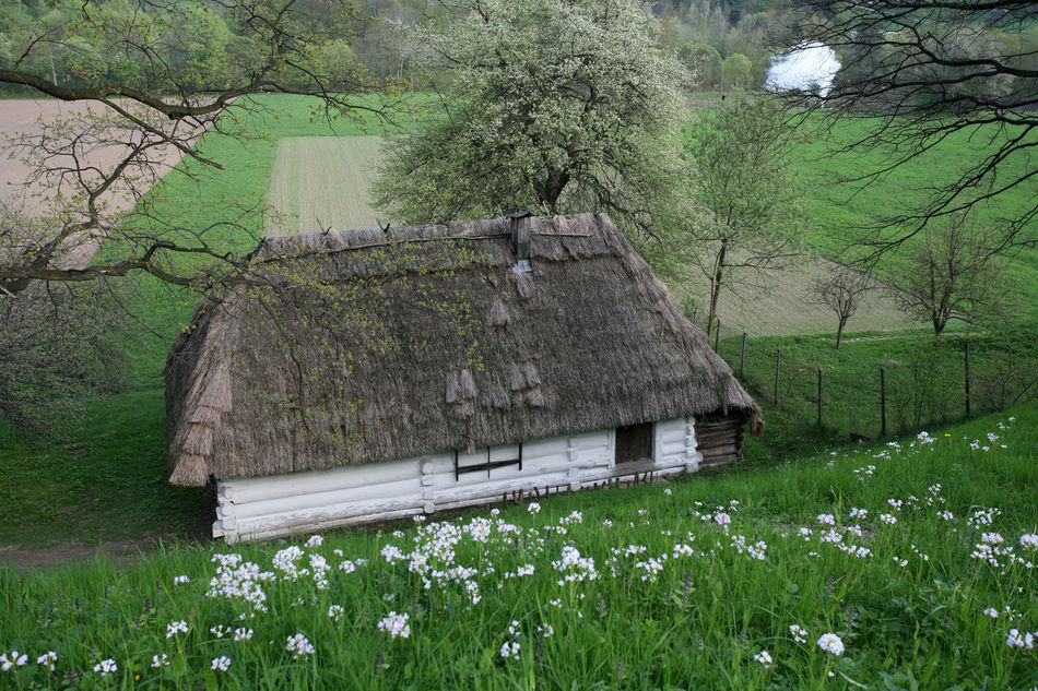 Beskid Beskid Niski Beskidy House Poland Polen Rural Rural Scene Thatch Thatched Roof Village Wooden House