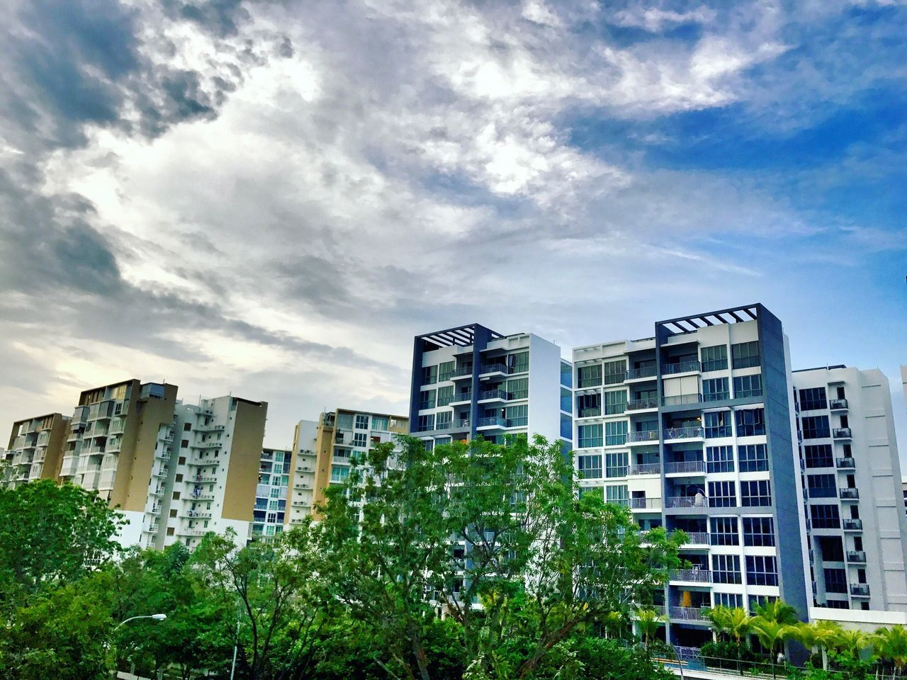 building exterior, architecture, city, modern, skyscraper, sky, built structure, low angle view, city life, no people, tree, growth, outdoors, day, cityscape, apartment