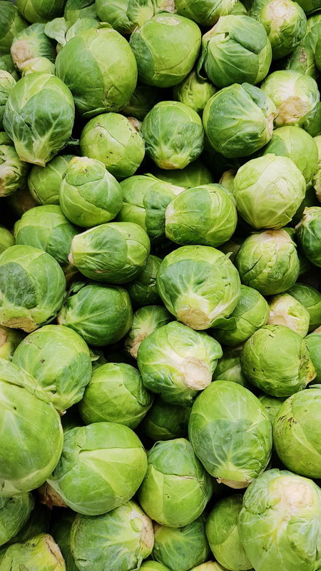 Brussels Sprouts Green Color Healthy Eating Backgrounds Vegetable Brussels Sprout Full Frame Large Group Of Objects Freshness Food And Drink Food No People Day Close-up Outdoors Nature