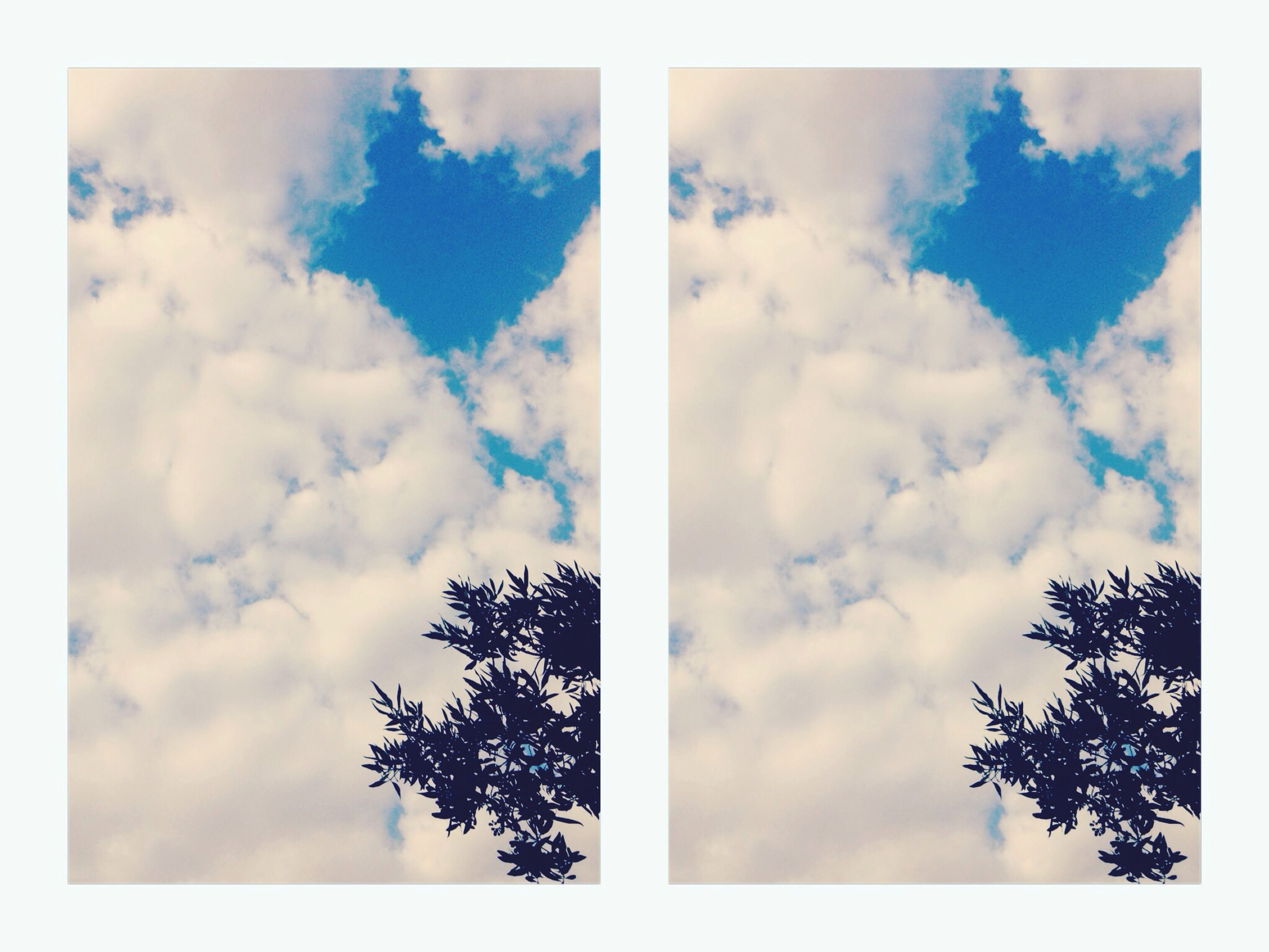 transfer print, low angle view, sky, tree, auto post production filter, cloud - sky, tranquility, cloud, blue, nature, beauty in nature, cloudy, scenics, tranquil scene, day, outdoors, no people, silhouette, growth, branch