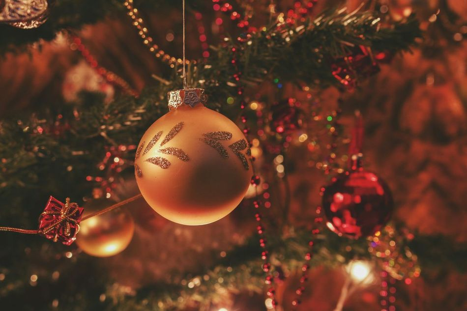 Beautiful stock photos of christmas tree, Christmas, Christmas Ornament, Christmas Tree, Close-Up
