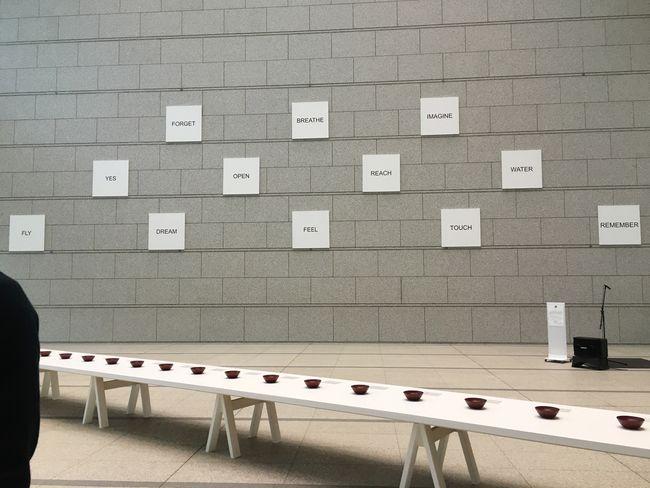Yokoono Exhibition Artist Words