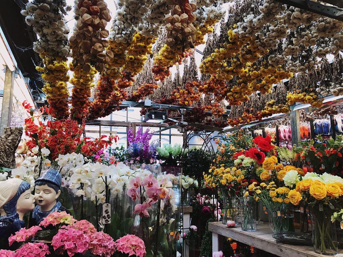 Bloemenmarkt Multi Colored Flower Market Flower